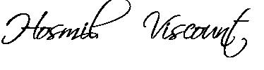 Hosmil Viscount Instrumentos Musicais